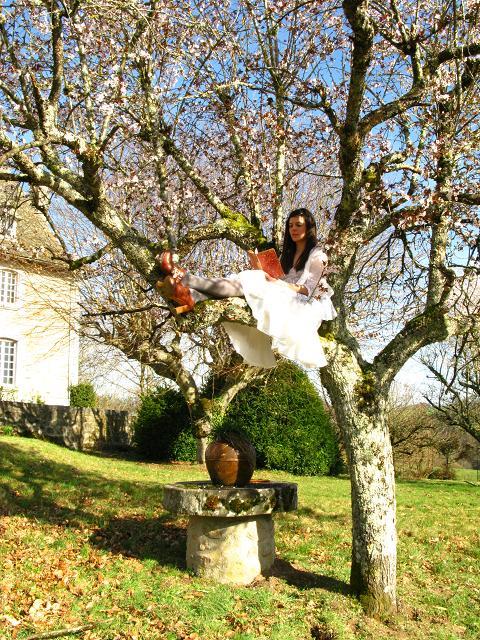 blossom-tree-17.jpg
