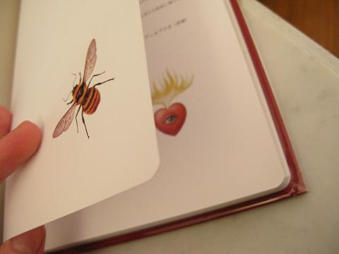 mark-ryden-book1.JPG