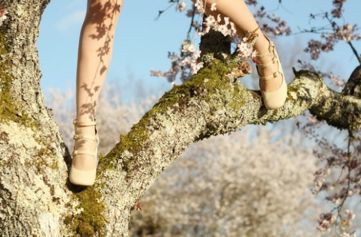 blossom-tree-18