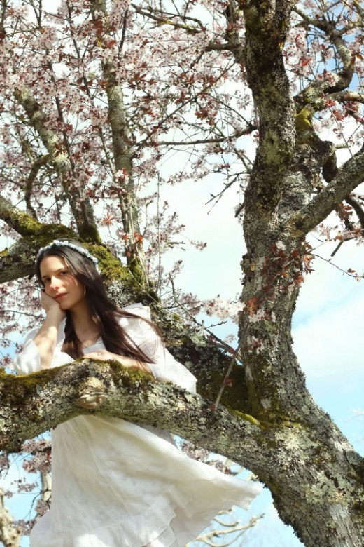 blossom-tree-19