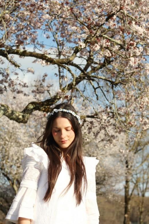 blossom-tree-23