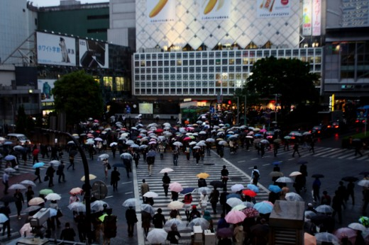 shibuya-in-the-rain-2
