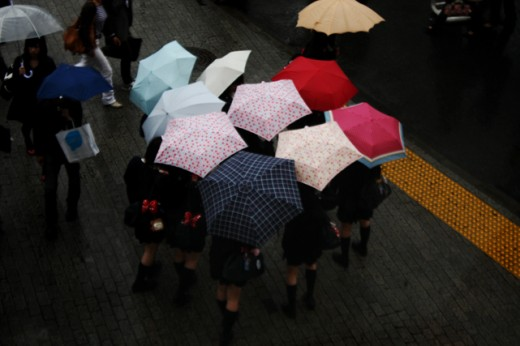 shibuya-in-the-rain