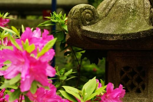 tokyo-garden-7