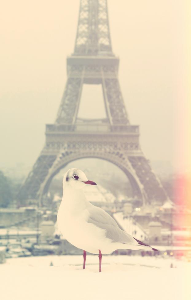 paris-neige-20