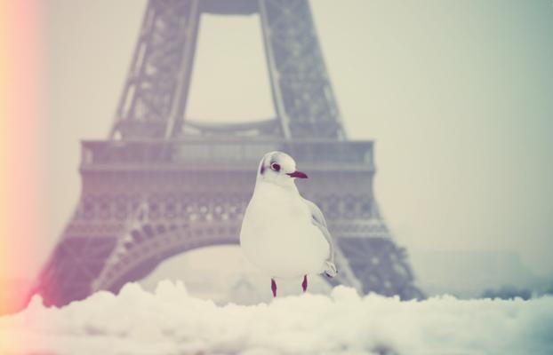 paris-neige-3