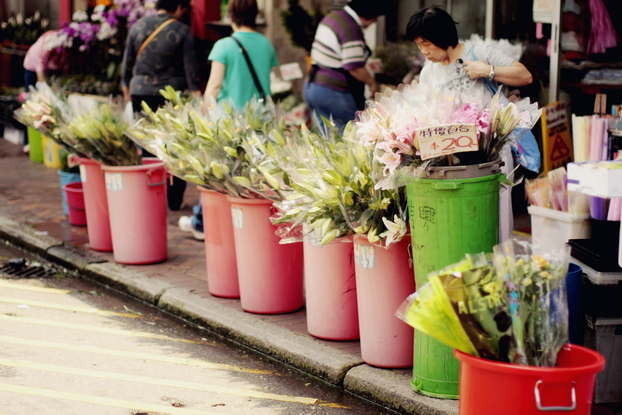 hong-kong-flower-market-05