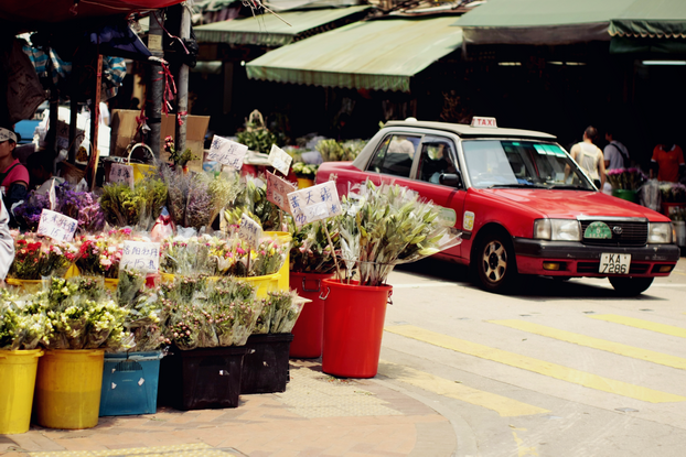 hong-kong-flower-market-10