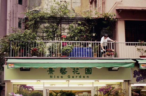 hong-kong-flower-market-13