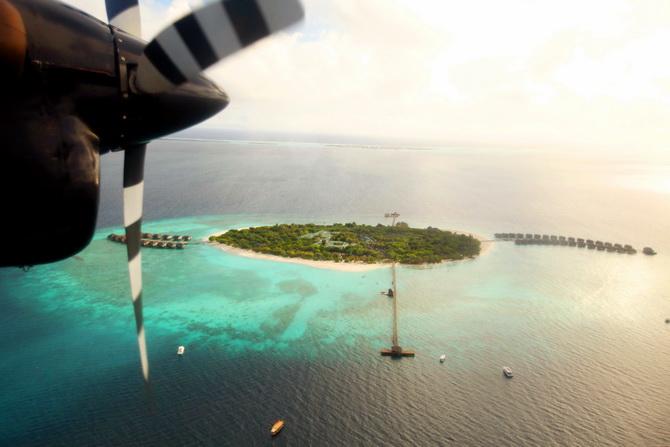 The Cherry Blossom Girl - Maldives 14