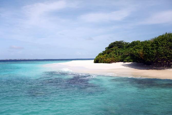 The Cherry Blossom Girl - Maldives 111