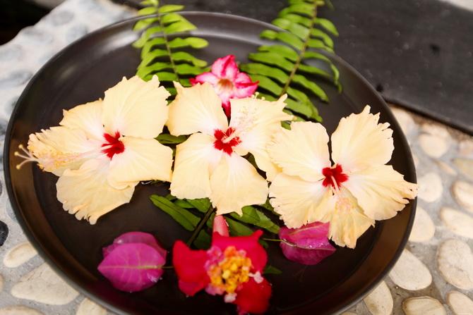 The Cherry Blossom Girl - Maldives 51