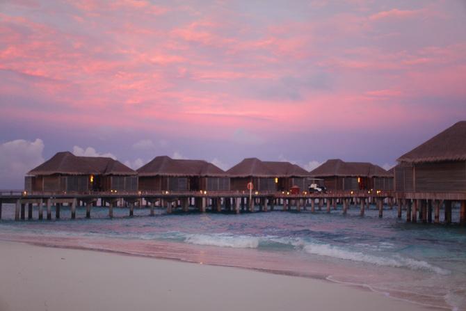 The Cherry Blossom Girl - Maldives 77