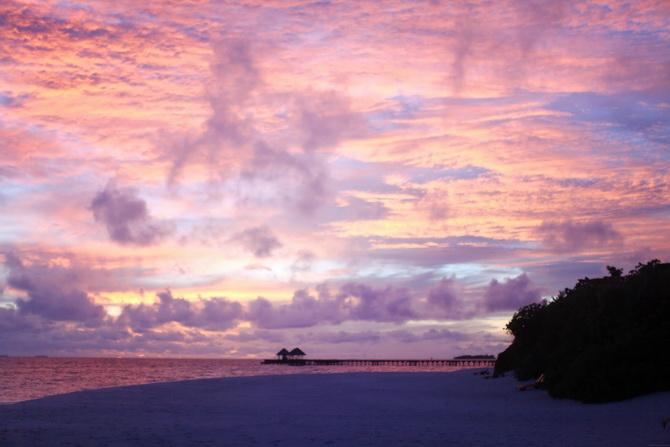 The Cherry Blossom Girl - Maldives 79