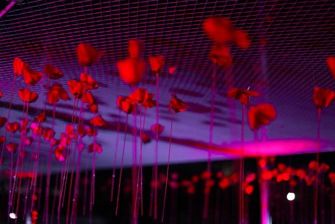 Kenzo Flower in the air 05