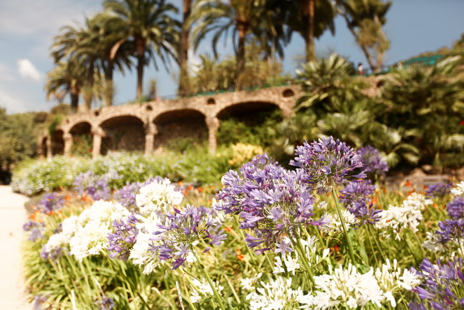 Parc Guell 22