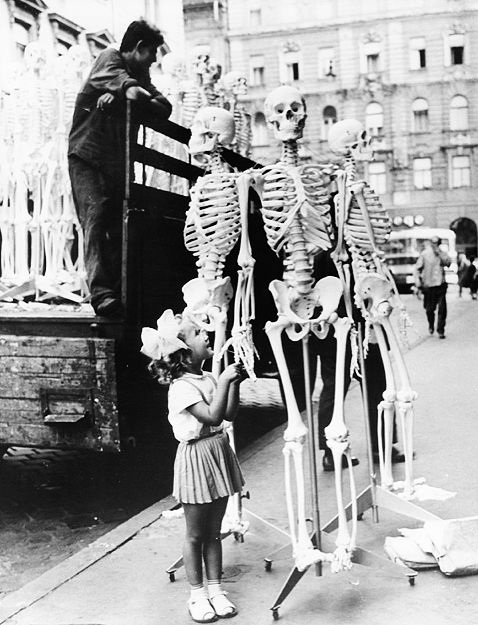 Little girl with biology class skeletons in Hungary 1966
