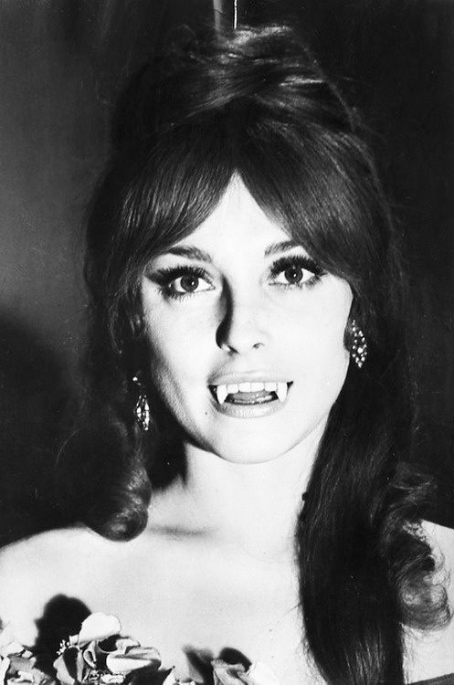 Sharon Tate Fearless Vampire Killers (1967)