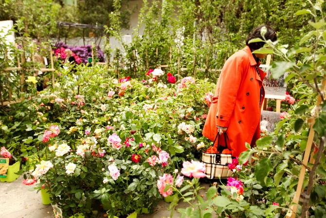 L'Art du Jardin 08