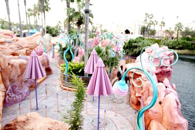 The Cherry Blossom Girl - Tokyo Disney Sea 33