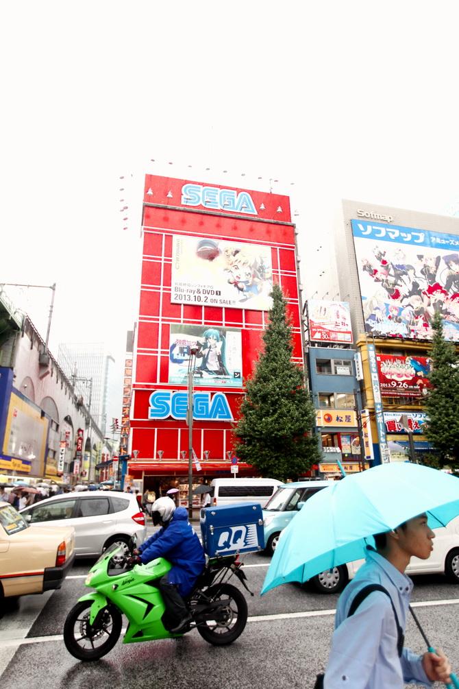 The Cherry Blossom Girl - Akihabara 12