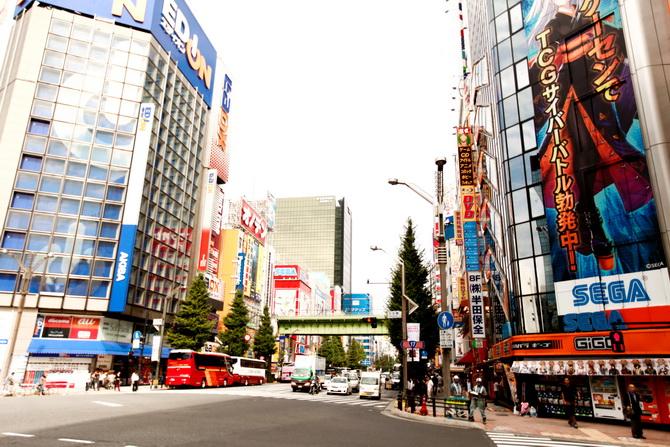 The Cherry Blossom Girl - Akihabara 16