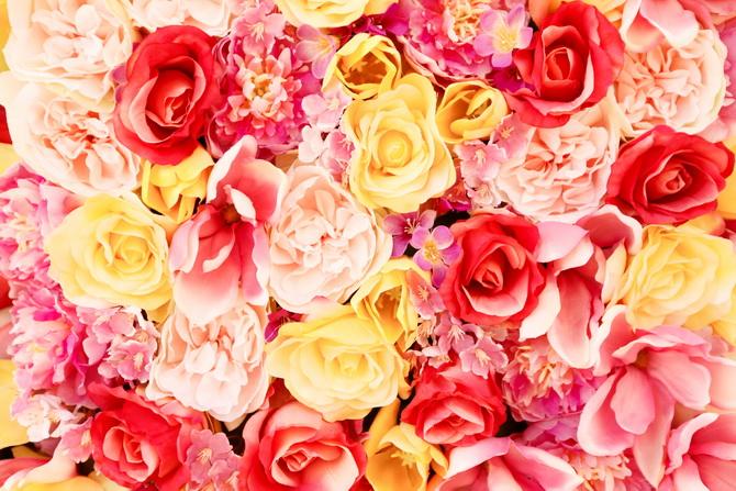 The Cherry Blossom Girl - Maasmechelen 29