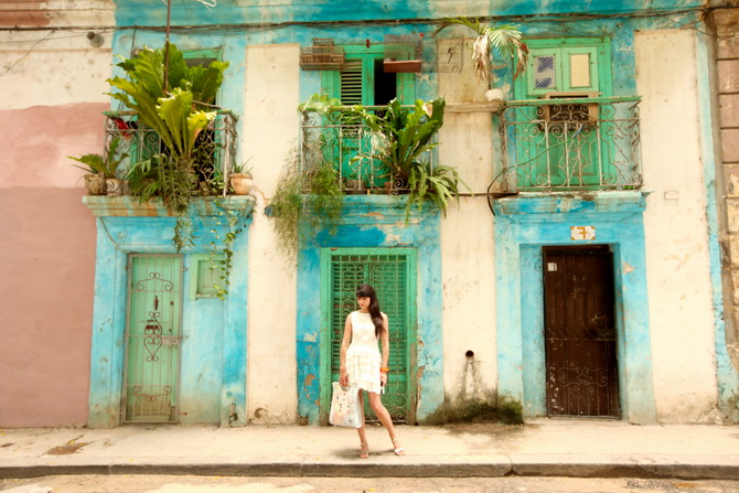 The Cherry Blossom Girl - La Havana Azul 23