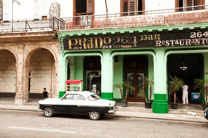 The Cherry Blossom Girl - Saludos desde La Habana 03