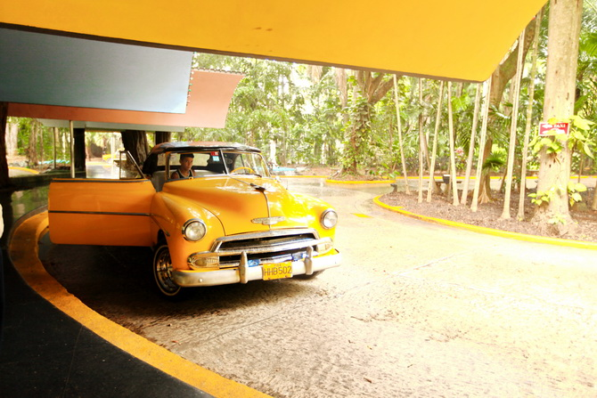 The Cherry Blossom Girl - Saludos desde La Habana 23