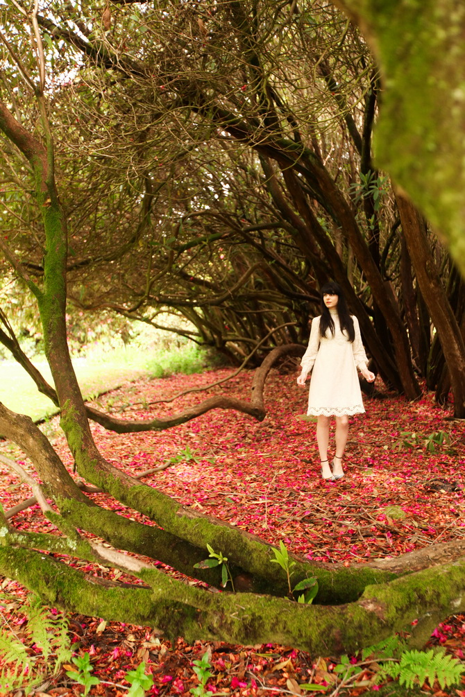 The Cherry Blossom Girl - The Lost Gardens of Heligan 12