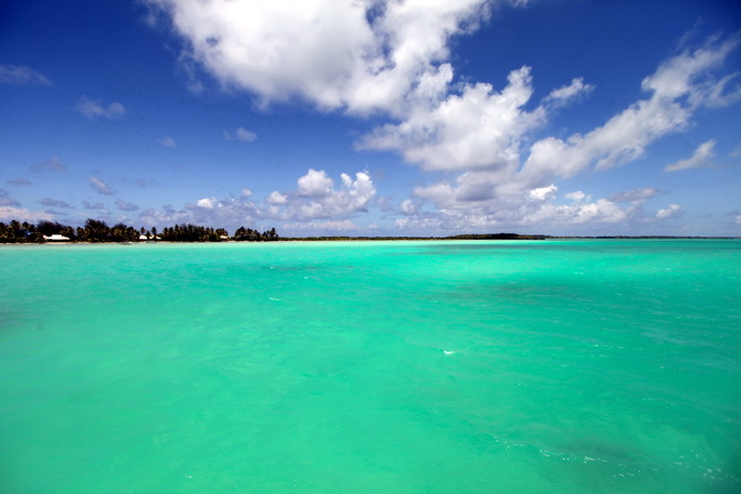 The Cherry Blossom Girl - Bora Bora 25