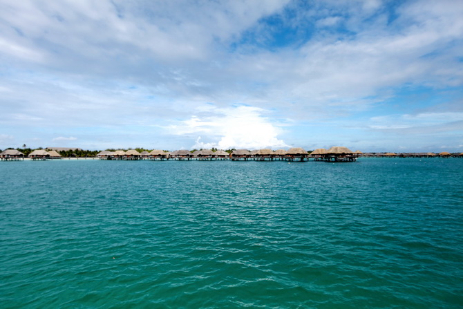 The Cherry Blossom Girl - Bora Bora 33