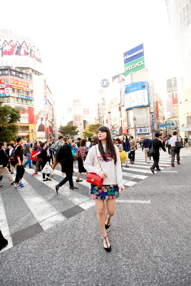 The Cherry Blossom Girl - Japan 2014 01