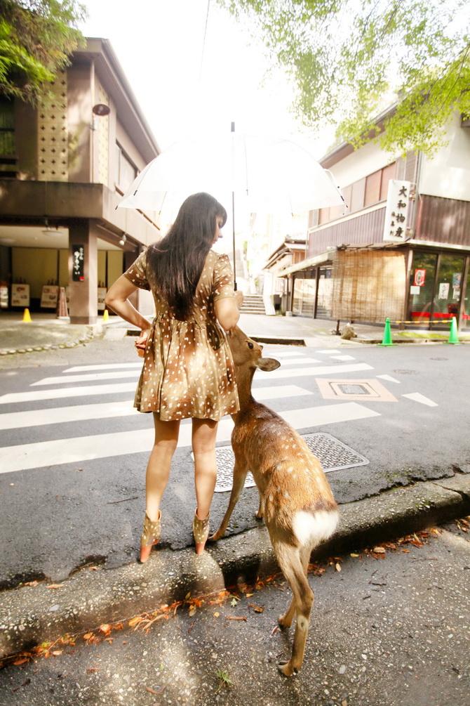 The Cherry Blossom Girl - Japan 2014 08