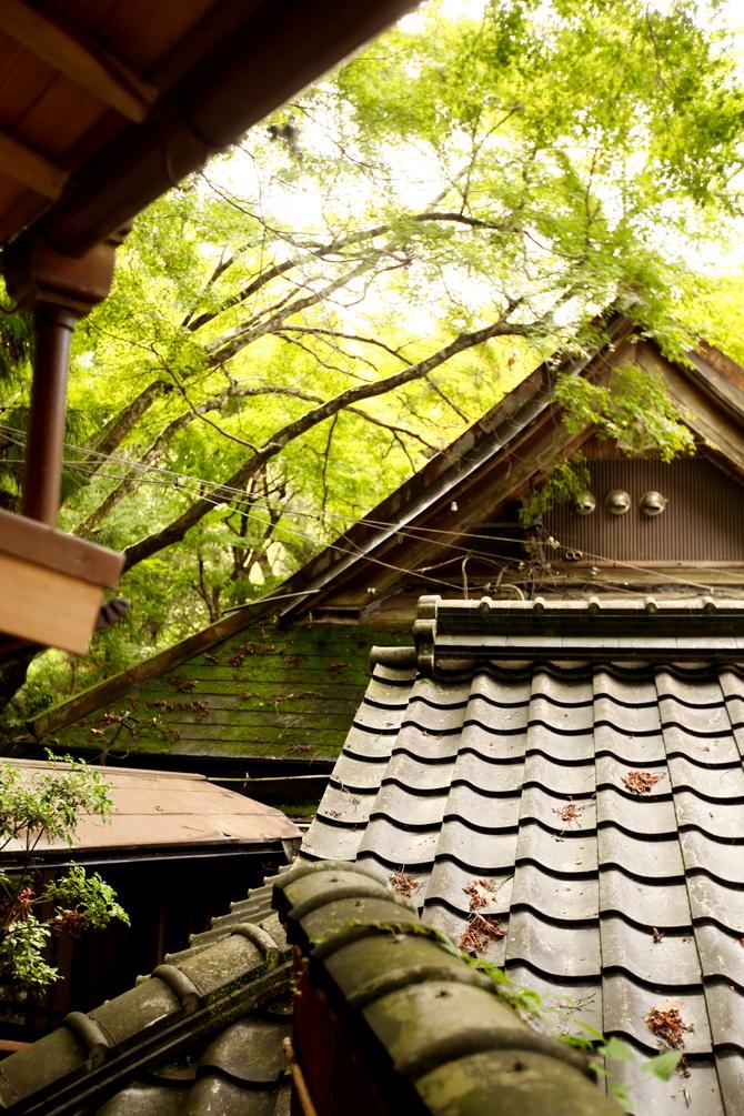 The Cherry Blossom Girl - Ryokan Tsukihitei Nara 24