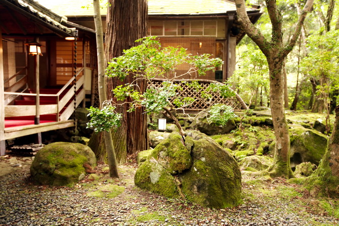 The Cherry Blossom Girl - Ryokan Tsukihitei Nara 27