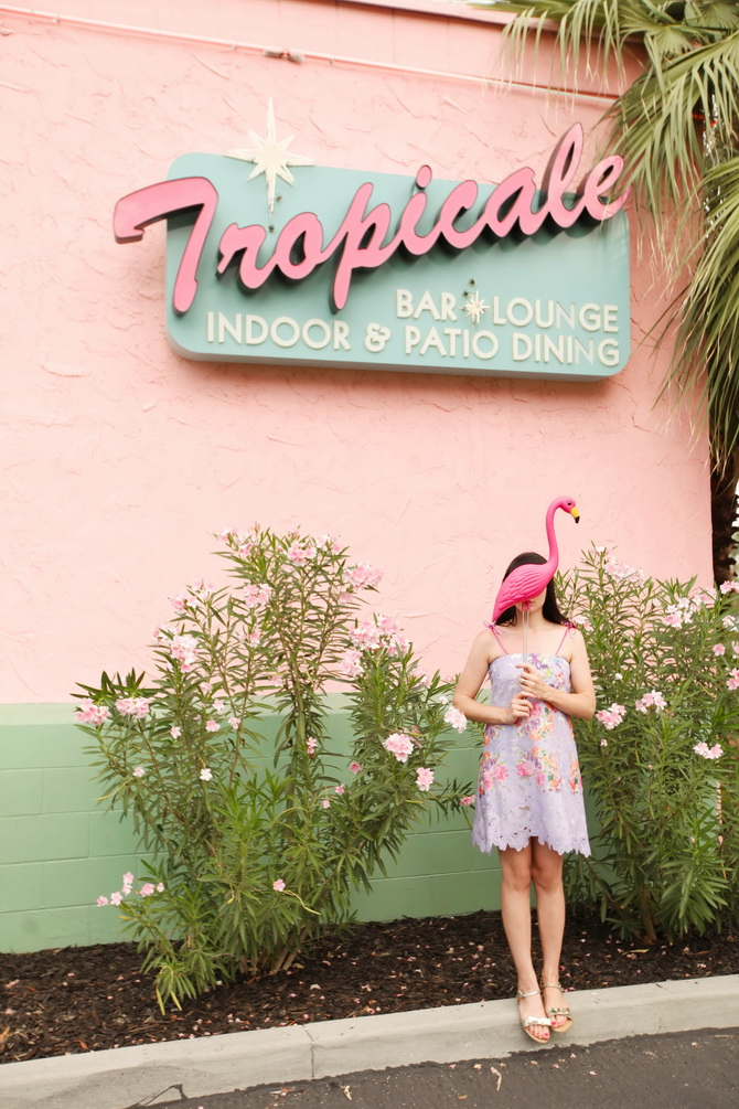 The Cherry Blossom Girl - Tropicale 01