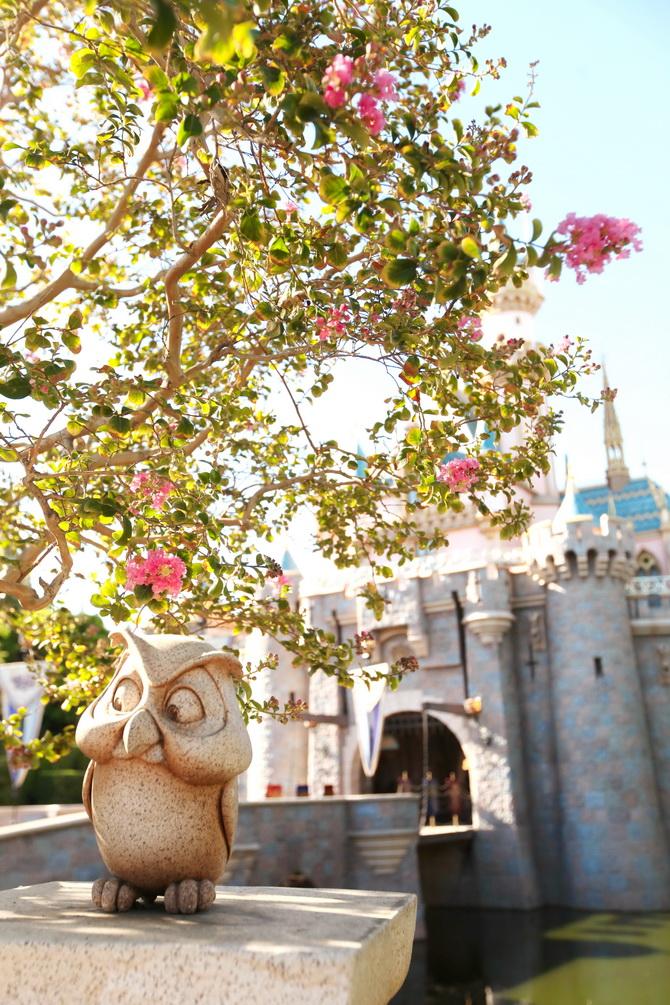 The Cherry Blossom Girl - Disneyland Anaheim 20