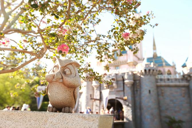 The Cherry Blossom Girl - Disneyland Anaheim 21