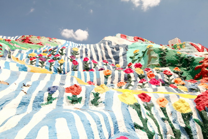 The Cherry Blossom Girl - Salvation Mountain 13