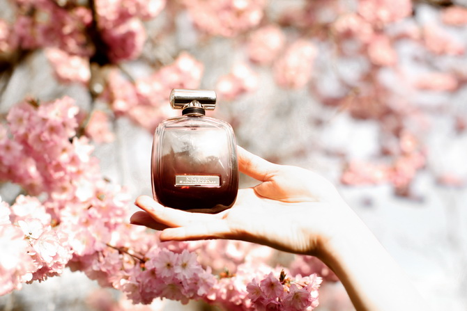 The Cherry Blossom Girl - Nina l'Extase 04