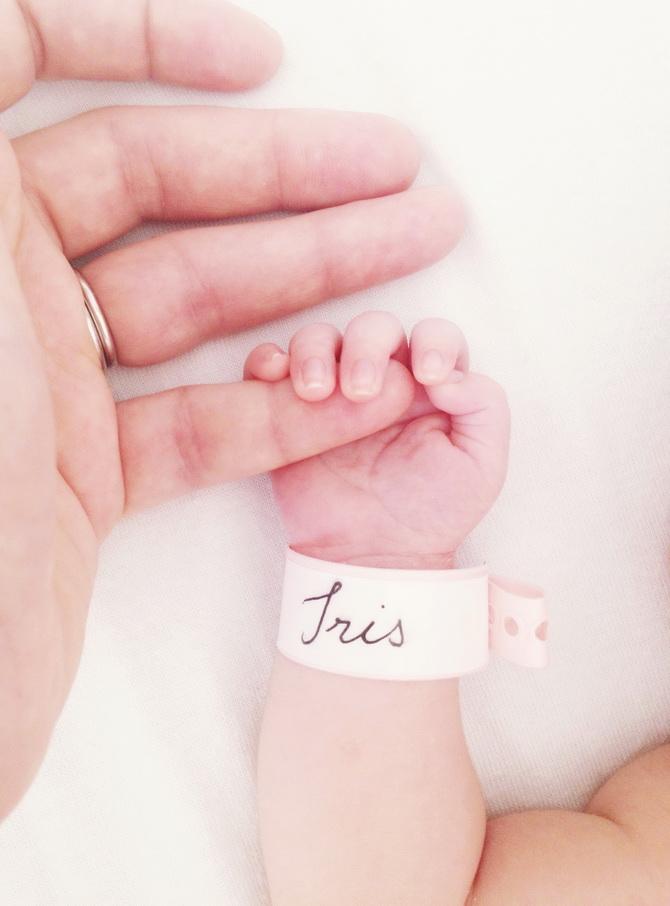 Baby Iris 03